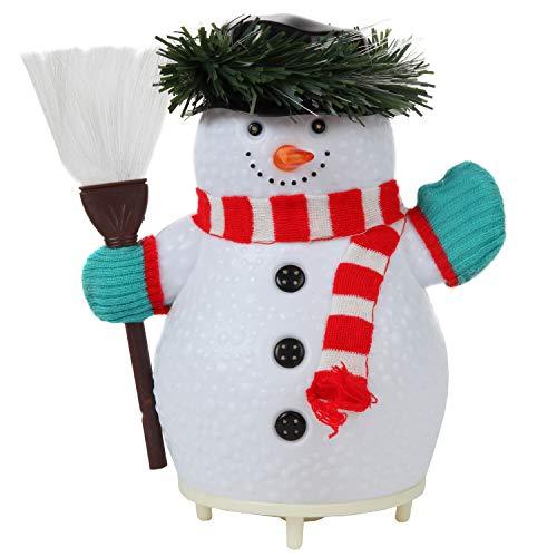 Trenton Gifts Fiber Optic Color Changing Snowman ()
