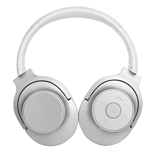 Bluetooth Headphones,22 Hours Playtime for TV Computer Travel Work Training (slivw)
