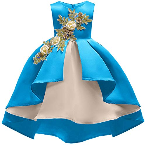 Baby Girl Embroidery Silk Princess Dress for Wedding Party Kids Dresses for Toddler Girl Children Fashion Christmas Clothing,Sky Blue2,10