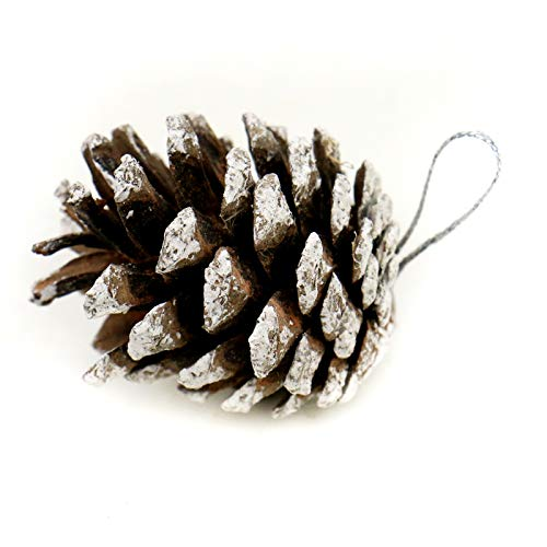WSSROGY 27Pcs Natural Pine Cones Snow Ornaments with String Pendant for Christmas Hanging ()