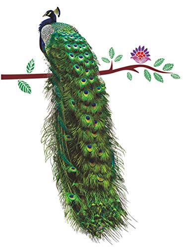 "SWORNA Nature Series Flower Peacock Garden Vinyl Removable DIY Wall Art Mural Sticker Decor Decal - Lady's Bedroom Office Sitting Living Room Hallway Kitchen Glass Door Window Nursery 26""H X 23""W from SWORNA"