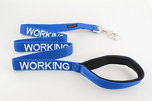 WORKING Dexil Friendly Dog Collars Color Coded Dog Accident
