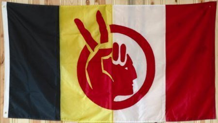 American Indian Movement america banner product image