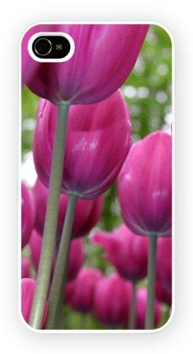 Tulip Flowers, iPhone 6+ (PLUS) cas, Etui de téléphone mobile - encre brillant impression