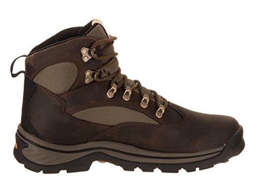 medi Timberland para green Brown hombre Gtx 1 Trail senderismo 15130 Botas Chocorua de H1qFHU