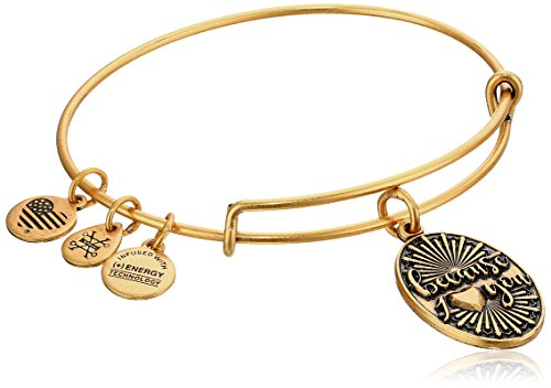 Alex Ani Because Rafaelian Bracelet