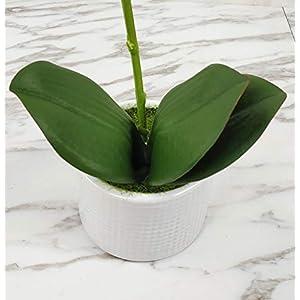 LIVILAN Silk Orchid Artificial Flower Arrangements with Vase 2