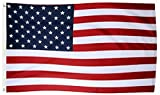 Tenby Living American Flag 3 x 5 ft. Heavyweight 2X Thick Polyester - UV Protected, Quadruple-Stitched Fly End, Double-Stitched Edges, Brass Grommet