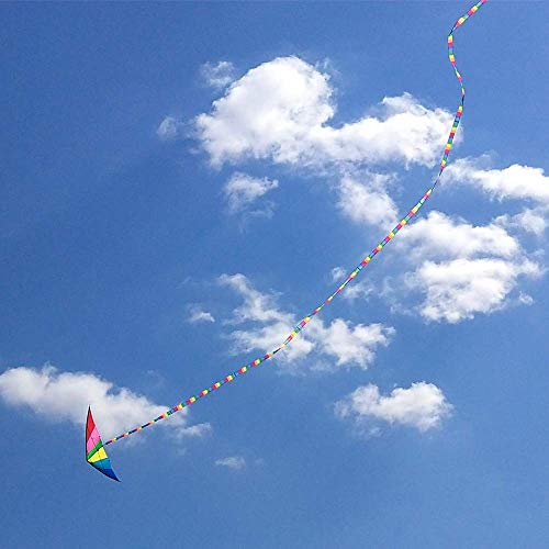 Kite Tail,Flat Ribbon Streamer Rainbow Multi Color (Rainbow), 49 Feet