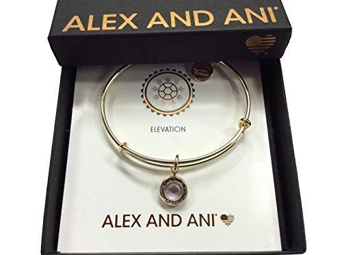 Alex and Ani Women's Swarovski Color Code Bangle June Light Amethyst Bracelet, Shiny Gold