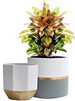 White Ceramic Flower Pot Garden Planters 6.5 + 5.4 Inch Indoor, Plant Containers with Gold and Grey Detailing