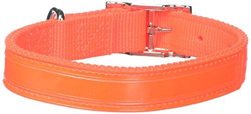 OmniPet Regular Bravo 2-Ply Nylon Reflecto Dog Collar, Neon Orange