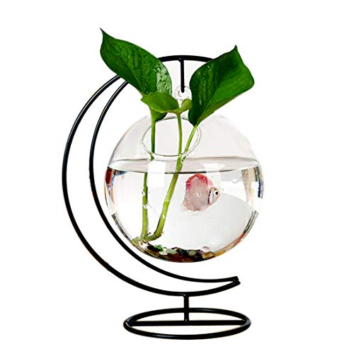 RuiyiF Desk Hanging Fish Tank Bowl with Stand Creative, Small Table Glass Fish Vase Aquarium for Home Decor (1 Fish Bowl) (Creative Stand)