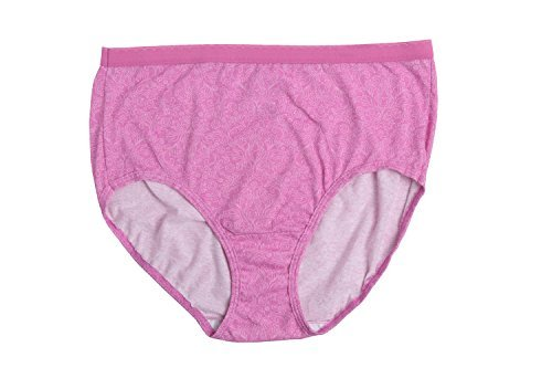 Fruit Of The Loom Womens 10 Pack Cotton Brief Plus Size -4842