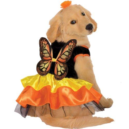 Monarch Butterfly Pet Pet Pet Costume - (Butterfly Pet Costumes)