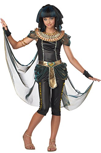 [California Costumes Dark Egyptian Princess Tween Costume, X-Large] (Ancient Egyptian Halloween Costumes)