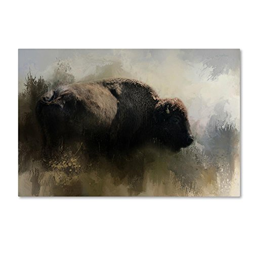 Abstract American Bison by Jai Johnson, 30x47-Inch Canvas Wall Art