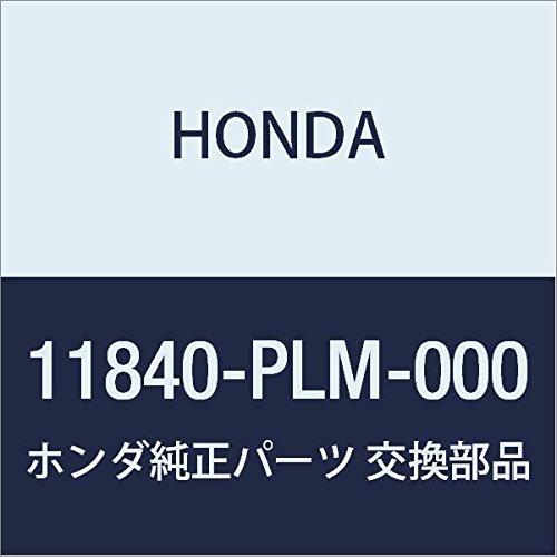 Genuine Engine Timing Cover - Genuine Honda 11840-PLM-000 Engine Timing Cover