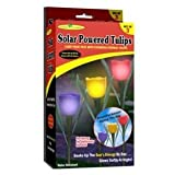 Garden Creations JB5431 S/3 Solar Powered Tulips, 3-Pack