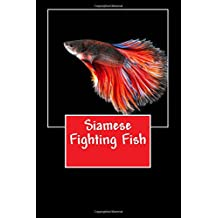 Siamese Fighting Fish (Journal / Notebook)