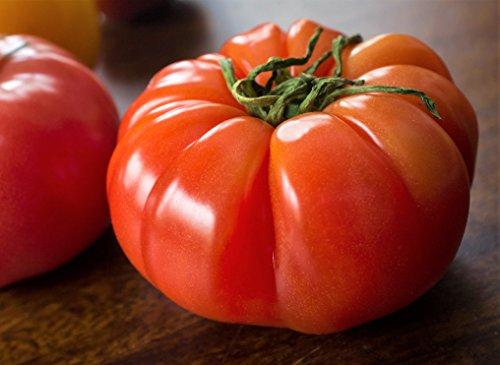 Organic Pink Brandywine Tomato Seeds - 2 SEED PACKETS! - Over 100 Heirloom Non-GMO USDA Organic Seeds (Pink Brandywine Tomato)