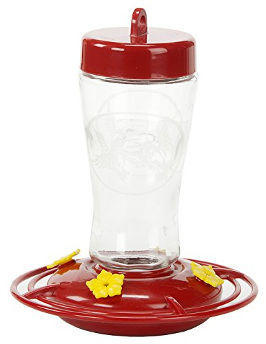 Homestead 3910 12-Ounce Hummingbird Feeder (Etched Hardened Glass)