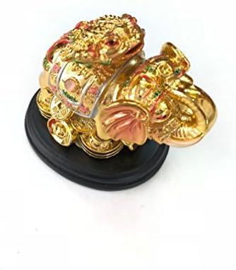 Amazon.com: My Lucky Feng Shui - Figura de rana con diseño ...