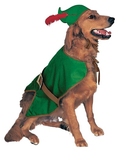 Pet Robin Costumes (Rubie's Pet Costume, Robin Hood, Large)