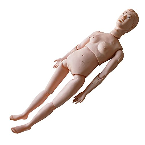 IntBuying Education Teaching Model Patient Care Human Manikin Woman Training ()