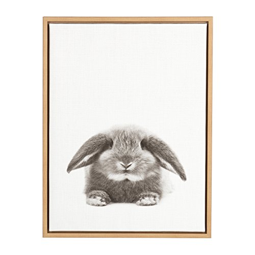 Kate and Laurel Sylvie Rabbit Black and White Portrait Framed Canvas Wall Art by Simon Te Tai, 18x24 Natural ()