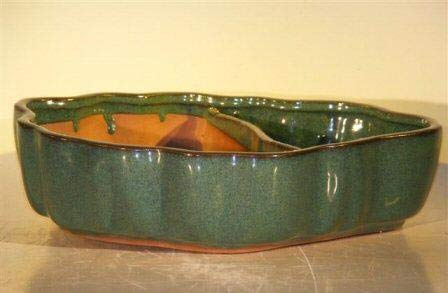Bonsai Boy's Blue Green Ceramic Bonsai Pot - Land Water with Scalloped Edges 9 5 x 7 5 x 2 25
