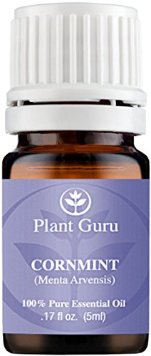 Cornmint Essential Oil 5 ml. (Japanese Peppermint) 100% Pure, Undiluted, Therapeutic Grade.