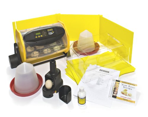 Brinsea Products Complete Incubation Pack for Hatching 24 Chicks in The Classroom (Classroom Halloween Games)