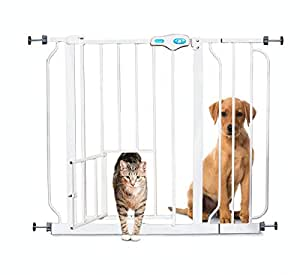 Carlson Extra Wide Walk Through Pet Gate with Small Pet Door, 37-Inches Wide