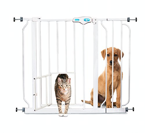 Carlson Extra Wide Walk Through Pet Gate with Small Pet Door, 37-Inches - Stores Mall Montgomery
