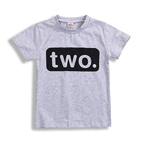 2nd Birthday T-Shirt Toddler Kids Boy Outfits Two Year Old Top Clothes (2 T, Light Gray)