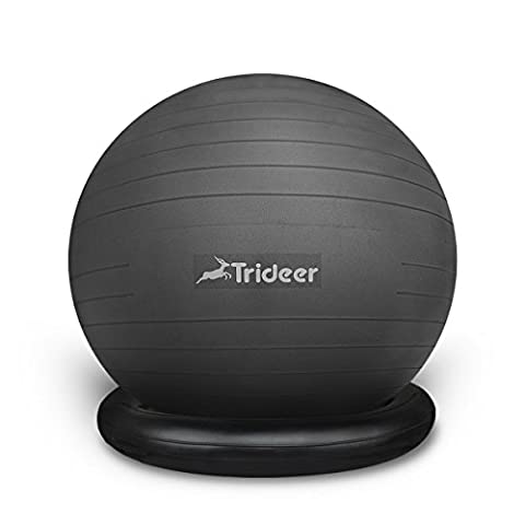 Trideer 65cm Exercise Yoga Balancing Ball (Ball with Ring (Black), 65cm) (Wiggle Seat Red)