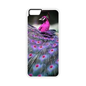 iPhone 6 4.7 Inch Phone Case peacock pattern Q6A1159102