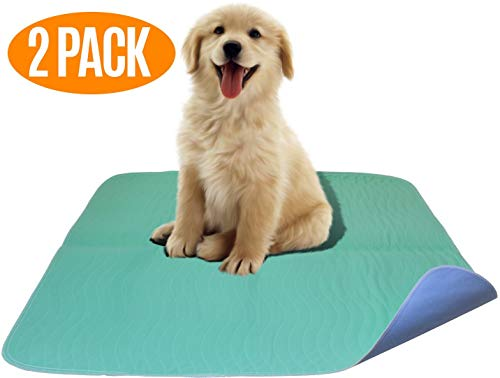 (Careoutfit 2 Pack - Premium Waterproof Reusable/Quilted Washable Large Dog/Puppy Training Travel Pee Pads - Size 34 x 36)