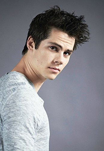 14x20 inch Dylan O Brien High Grade Laminated Paper Poster 9GSE-330