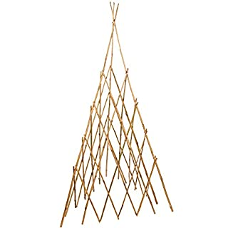 Bonide Products TP60 Bamboo Teepee Trellis for Climbing Plants, 60 Inches (When Open), 1 Trellis