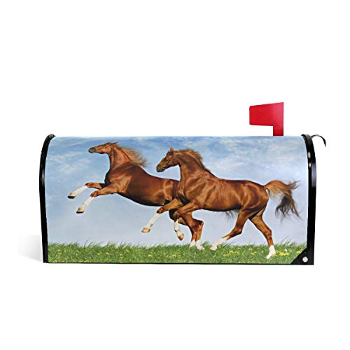 LORVIES Two Horses Frolic On The Plain Magnetic Mailbox Cover Standard Size 20.8 x 18 ()