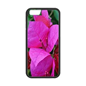 IPhone 6 Plus Case Bougainvillea 11, - [Black] Tyquin