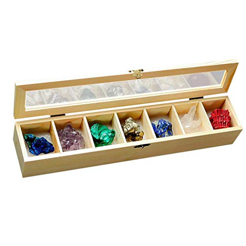 DYNWAVE Box of 7pcs Rock and Mineral Educational Collection Kits: Azurite, Lapis Lazuli, Malachite, Amethyst, Chalcopyrite, Druse, Coral