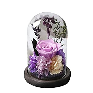Amoleya 4.9 Inch Handmade Preserved Rose Enchanted Rose That Lasts in Glass Dome,Violet 1
