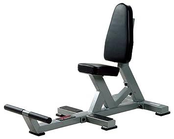 York Barbell multiusos utilidad banco de pesas - banco de comercial sentado vertical de peso Room, plata: Amazon.es: Deportes y aire libre
