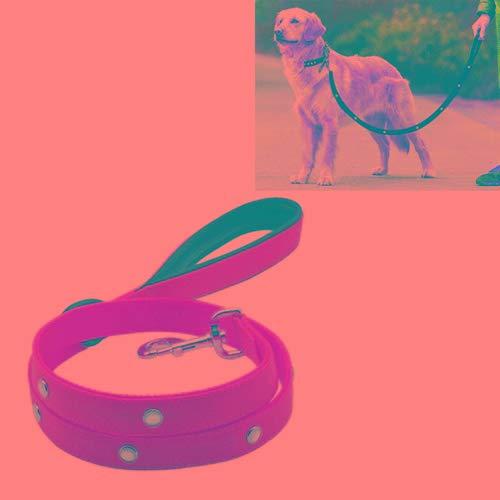 Animale domestico Bella abbastanza bella moda confortevole Corda in PVC con cinghie di trazione leggera con cinghia in PVC e cinghie con manico, adatta per cani di taglia media e grande, lunghezza cor