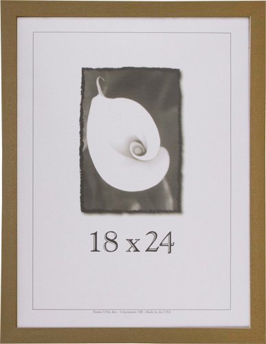 (18x24 Wood Picture Frame (American Maple) - Made in the USA)