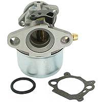Generic el carburador Briggs & Stratton 799868 498170