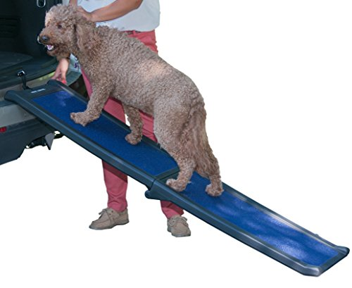 Dog Travel Ramp - Pet Gear Travel Lite Bi-Fold Ramp for Cats/Dogs, Lightweight/Portable, Safety Tether Included, Rubber Grippers for Stability